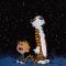 Calvin & Hobbes - Stars